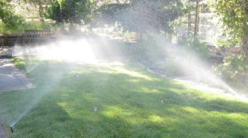 Can Test Lawn Sprinklers by Susan Donaldson